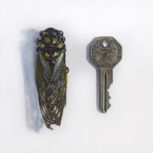 The Little Things: Cicada and Key